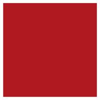 profilo-sostenibilita-icon